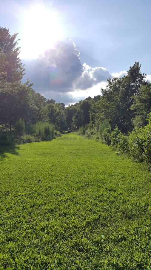 Parque de la granja de McDaniel en Duluth Georgia - Forest Walk imágenes de archivo libres de regalías