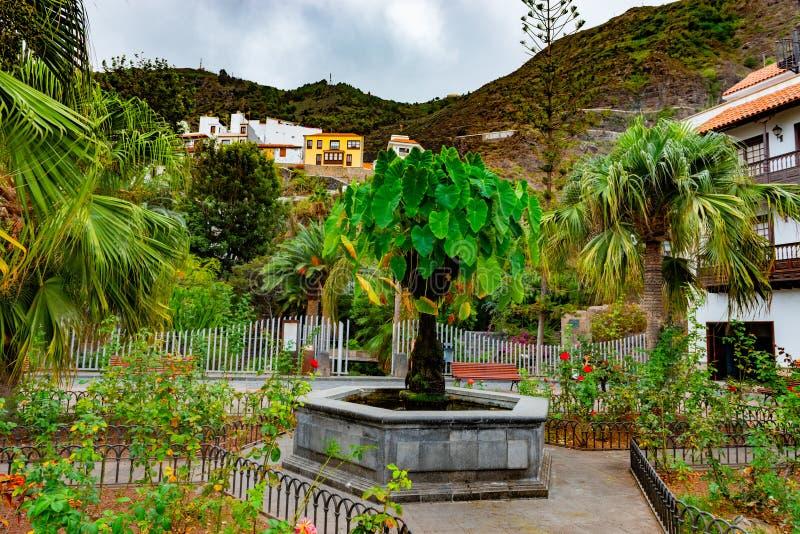 Parque de la Puerta de Tierra in Garachico. Tenerife. Canary islands royalty free stock image