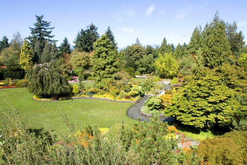 Parque de la reina Elizabeth, Vancouver, A.C. fotografía de archivo