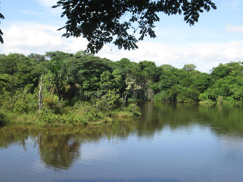 Parque de Llovizna del La, caída tropical del agua foto de archivo libre de regalías