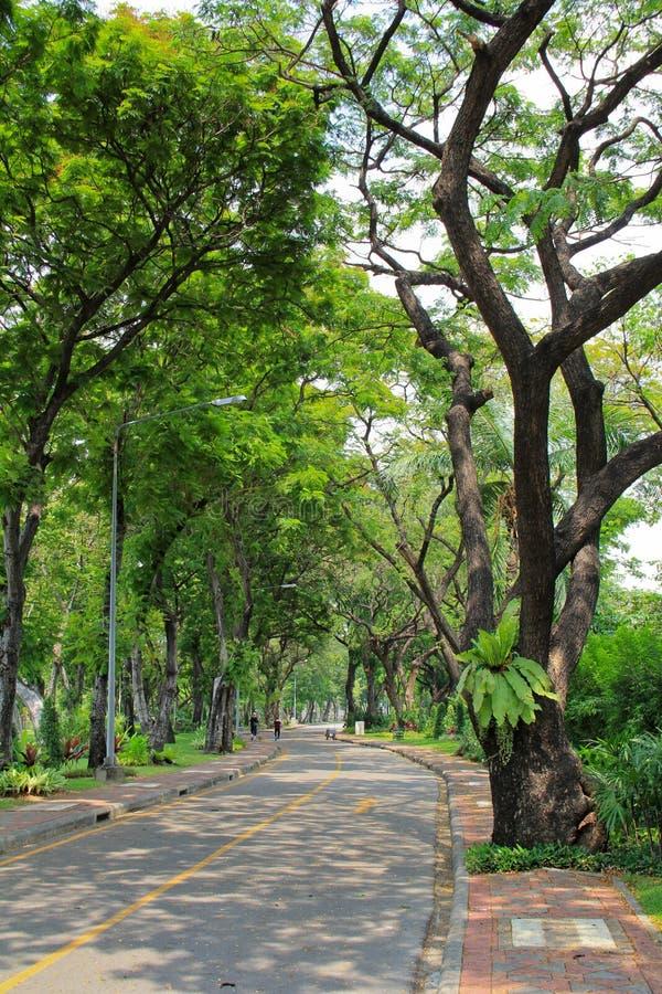 Parque de Lumpini en Bangkok imagenes de archivo