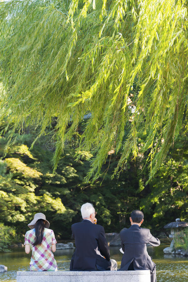 Parque de Maruyama, Kyoto imagenes de archivo