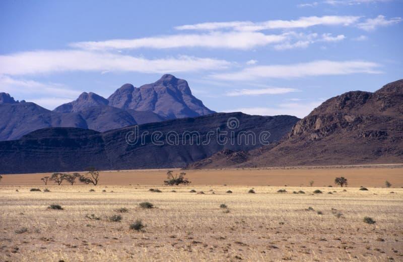 Parque de Namib Naukluft foto de archivo