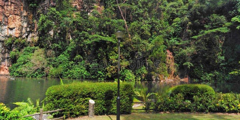 Parque de naturaleza de Bukit Batok foto de archivo