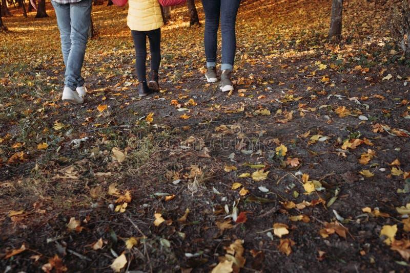 Parque de naturaleza del niño de los padres del ocio de la caída que camina fotografía de archivo