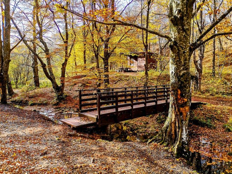 Parque de naturaleza Grza cerca del Paracin, Serbia foto de archivo