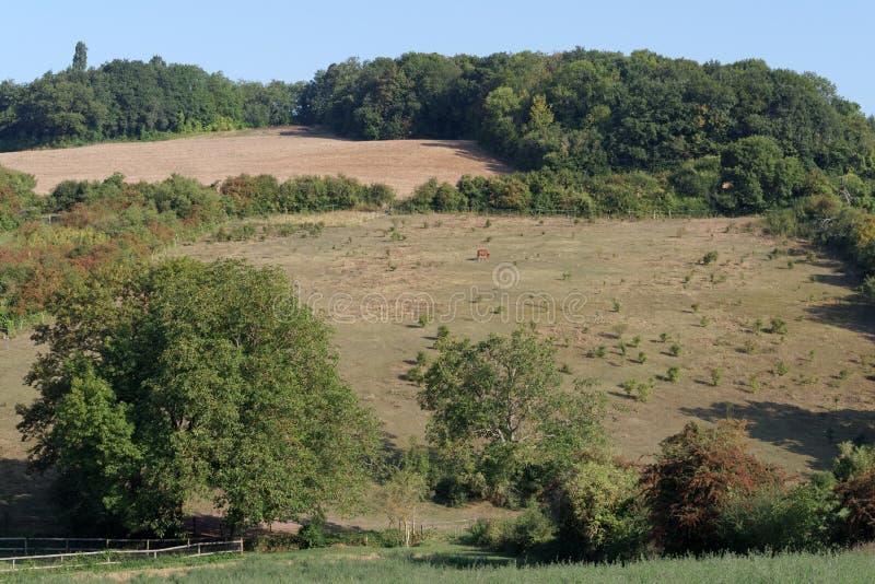 Parque de naturaleza regional francés de Vexin foto de archivo
