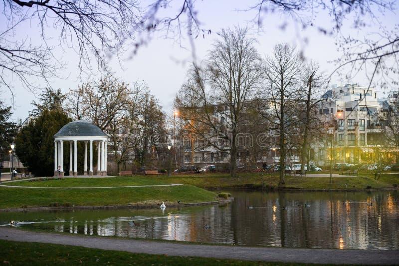 Parque de Orangerie em Strasbourg com as cisnes no lago e nas casas nos vagabundos fotografia de stock royalty free