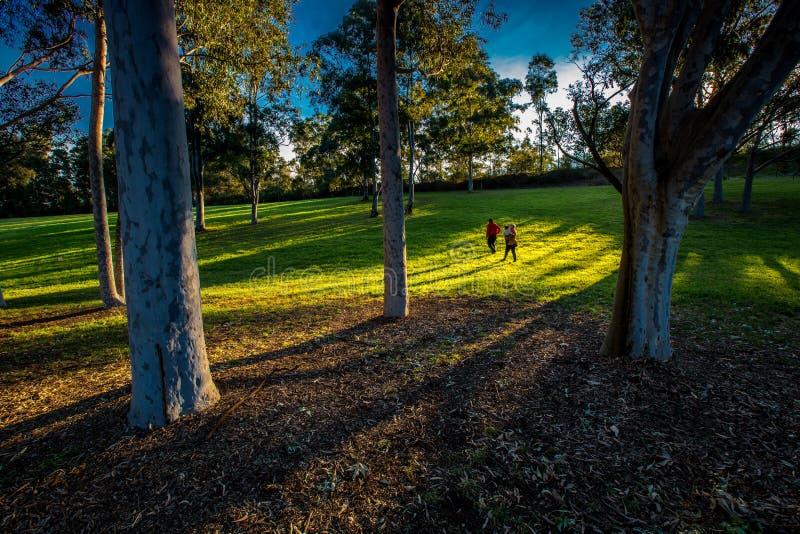 Parque de Parramatta foto de archivo