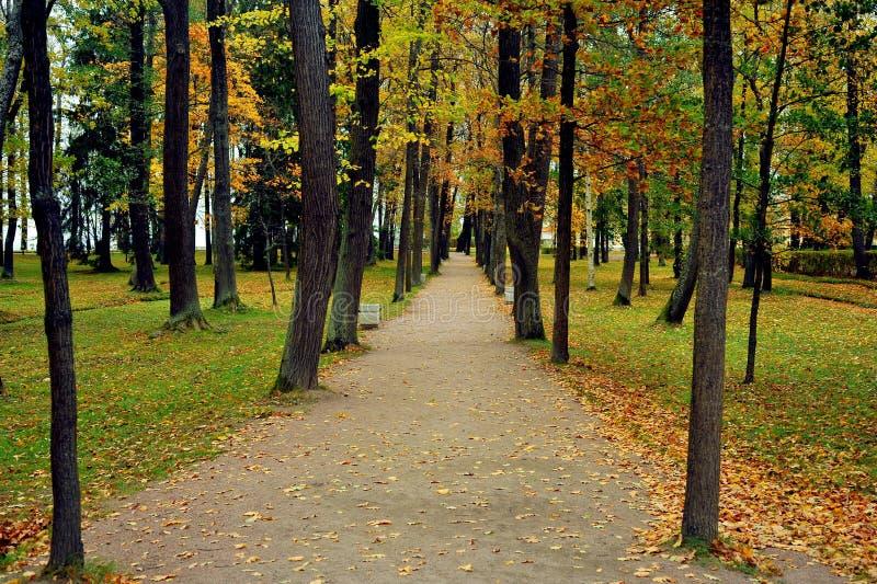 Parque de Peterhof perto de St Petersburg, Rússia fotografia de stock royalty free