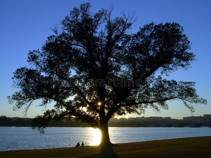 Parque de Potomac, Washington DC. fotos de archivo libres de regalías