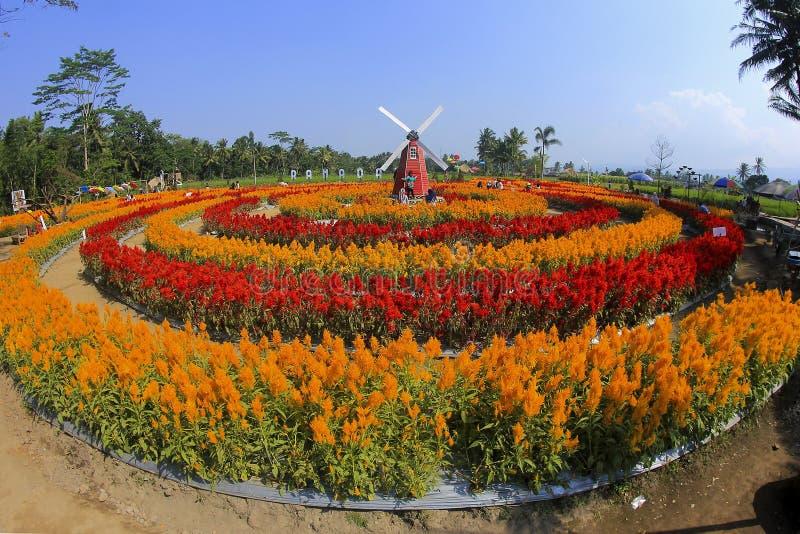 Parque de Ramandanu imagen de archivo libre de regalías