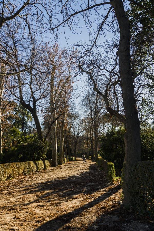 Parque de Retiro em Madrid Spain fotos de stock royalty free