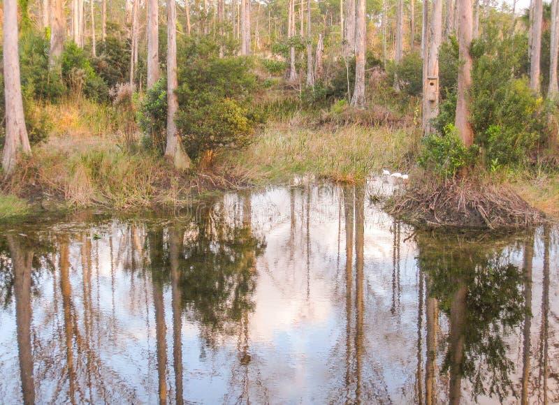 Parque de Riverbend en Júpiter, la Florida imagen de archivo
