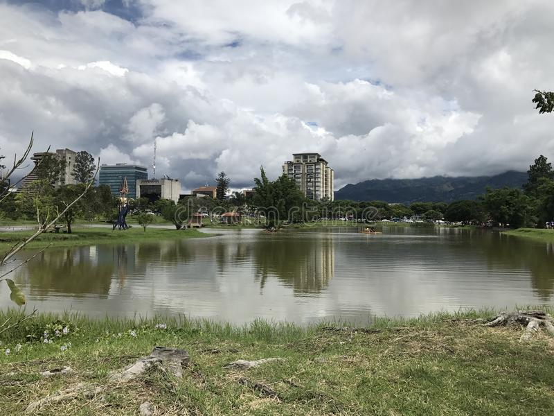 Parque de Sabana fotos de stock royalty free