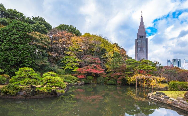 Parque de Shinjuku Gyoen no outono, Tóquio, Japão fotografia de stock royalty free
