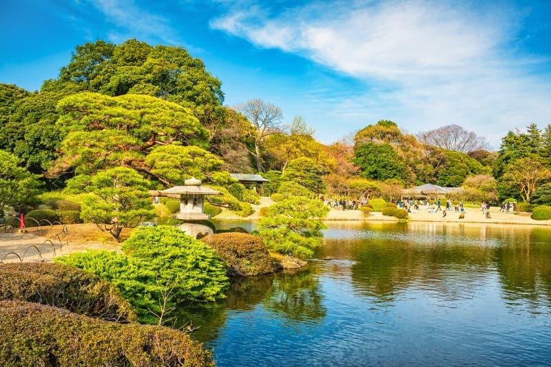 Parque de Shinjuku Gyoen, Tokio, Japón en primavera imagenes de archivo