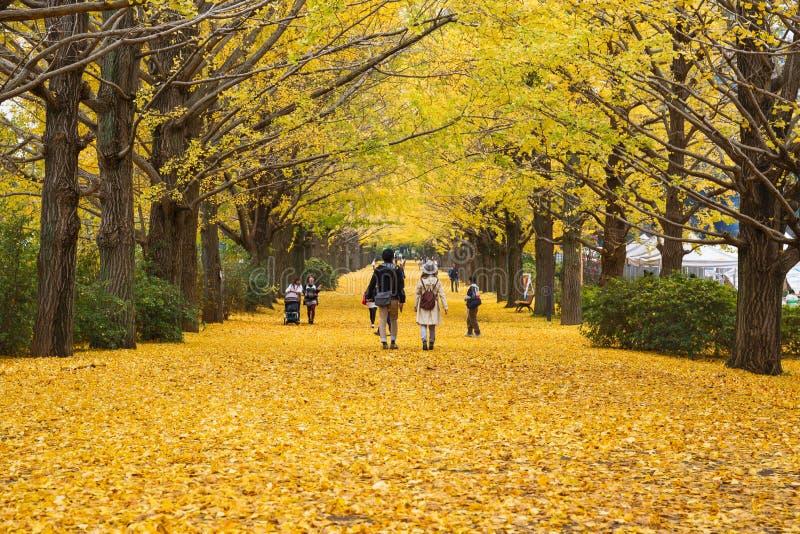 Parque de Showa Kenen imagens de stock