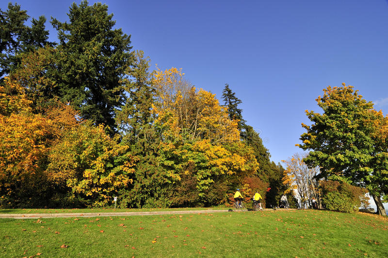 Parque de Stanley no outono fotos de stock
