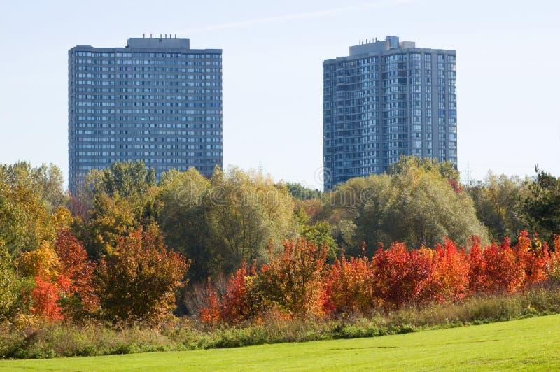 Parque de Toronto imagen de archivo