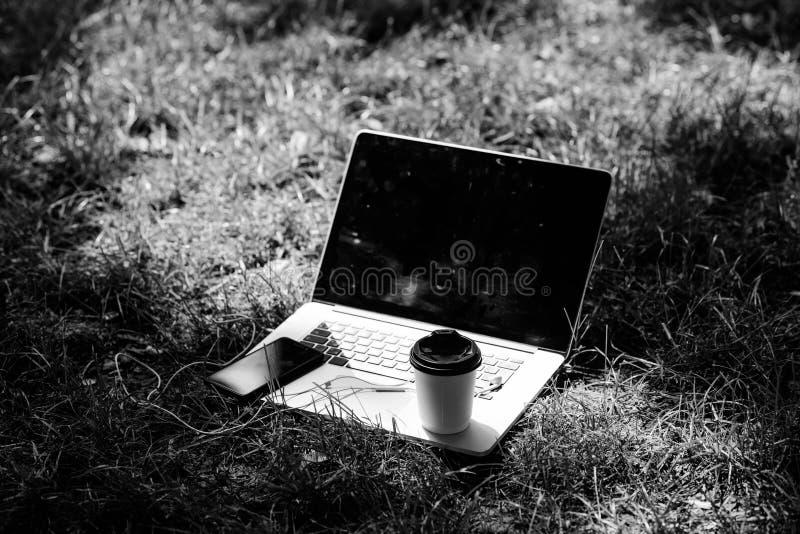 Parque de Verão Trabalho e relaxamento no ambiente natural Escritório verde É hora do café Café leva embora Café fotografia de stock