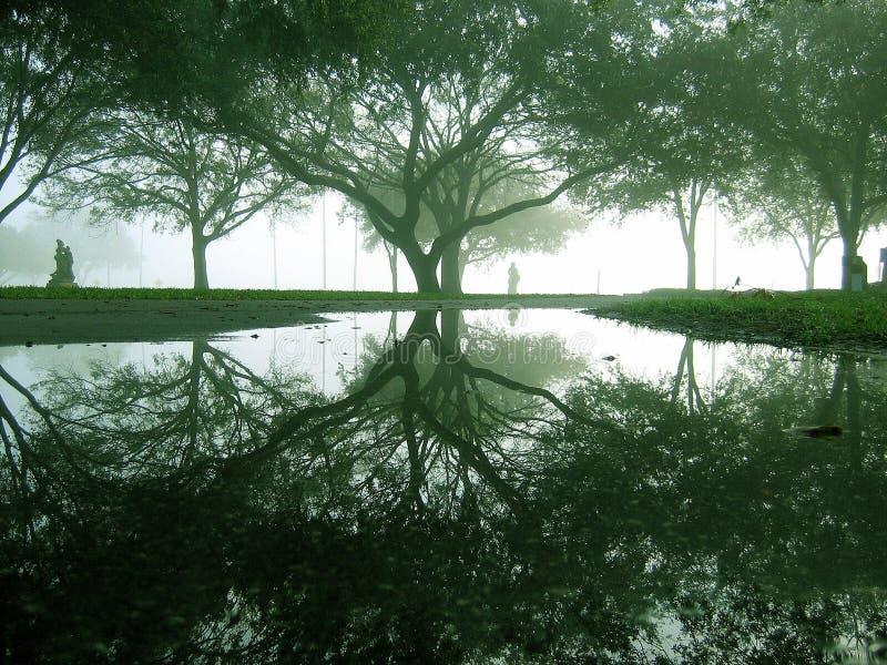 Parque de Vinoy fotos de archivo libres de regalías
