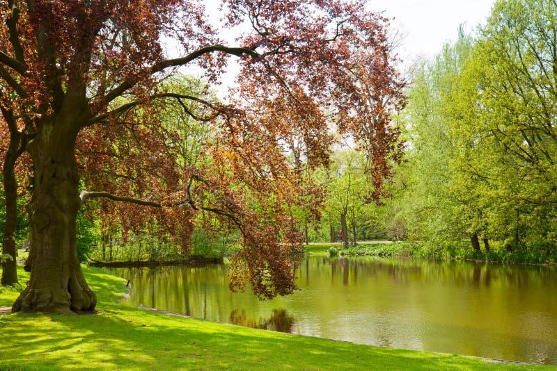 Parque de Vondel, Amsterdão imagens de stock royalty free
