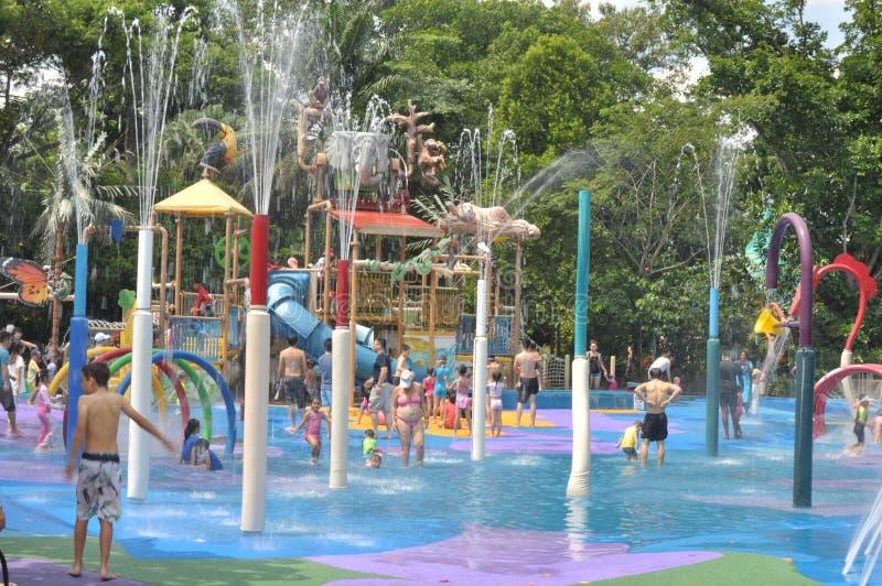 Parque del agua en el parque zoológico de Singapur fotos de archivo