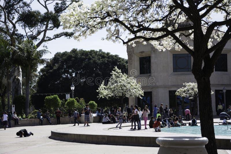 Parque del balboa foto de archivo libre de regalías