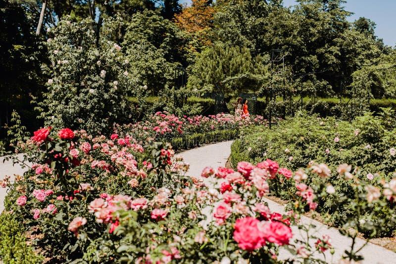 Parque del Buen Retiro en Madrid, España imagen de archivo