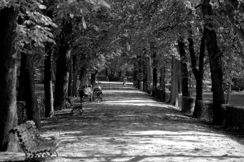 Parque Del Buen Retiro, Madryt - zdjęcia royalty free