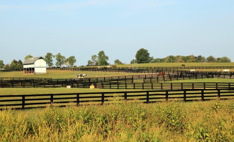 Parque del caballo de Kentucky fotografía de archivo libre de regalías