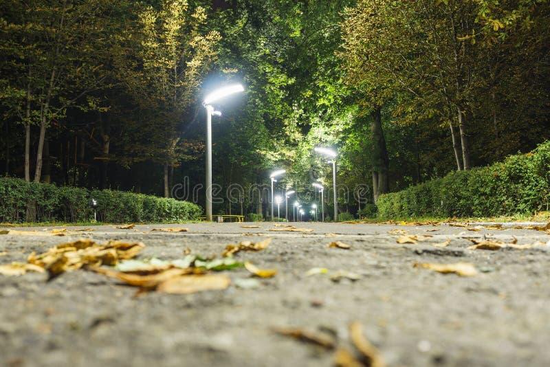 Parque del callejón de la noche fotos de archivo libres de regalías