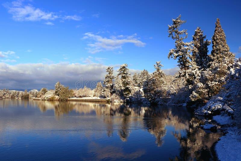 Parque del canal de la garganta en luz de la mañana después de la nevada, Victoria, B C foto de archivo