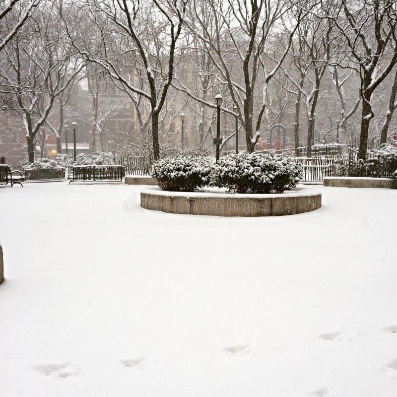 Parque del invierno imagen de archivo