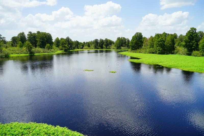 Parque del lago lettuce imagenes de archivo