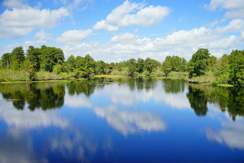 Parque del lago lettuce imágenes de archivo libres de regalías