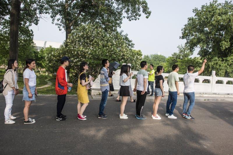 Parque del lago Xuanwu, grupo de estudiantes universitarios, cambiando el vídeo de la formación imagenes de archivo