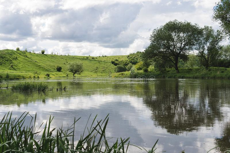 Parque del resorte Lago en el parque del verano Paisaje verde imagen de archivo