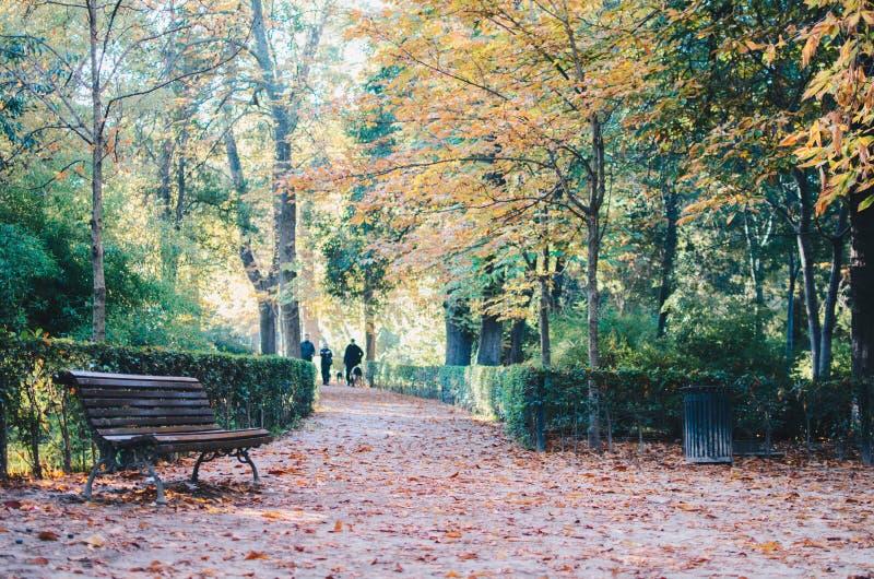 Parque del Retiro, Madrid fotografia de stock royalty free
