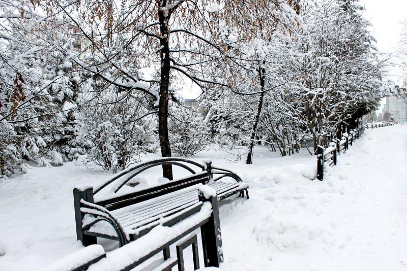 Parque del siberiano Nevado fotografía de archivo