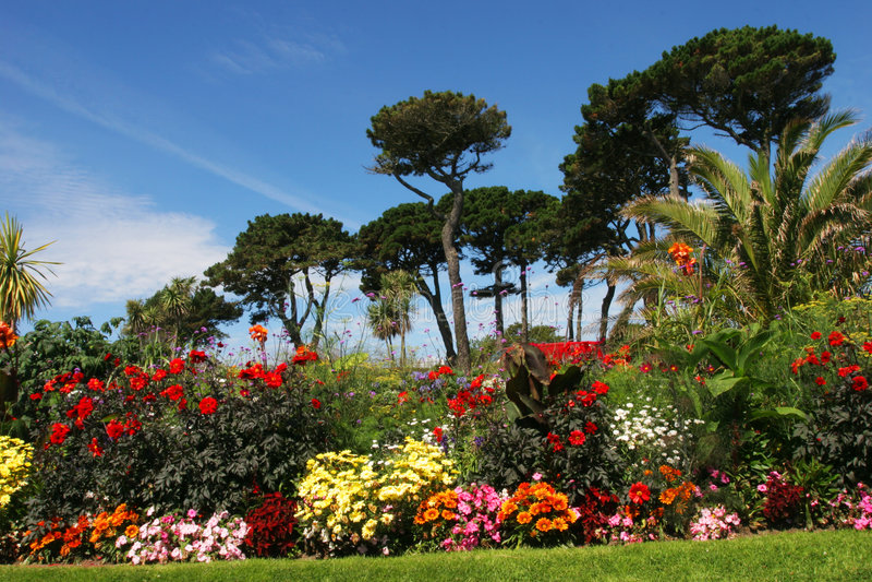 Parque del verano imagen de archivo