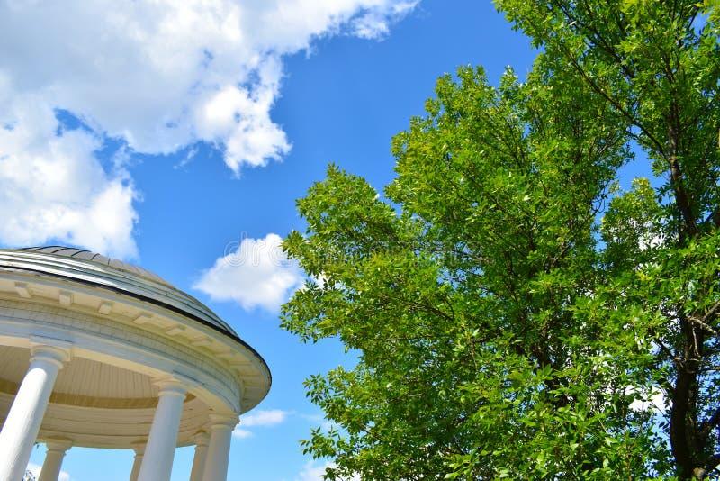 Parque del verano en día brillante imagen de archivo libre de regalías