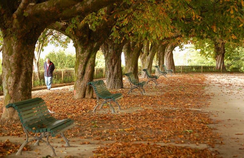 Parque a Dinamarca Alameda - Santiago de Compostela imagens de stock