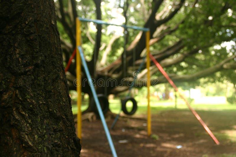 Parque do bosque frondoso fotos de stock