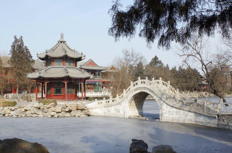 Parque do inverno fotografia de stock