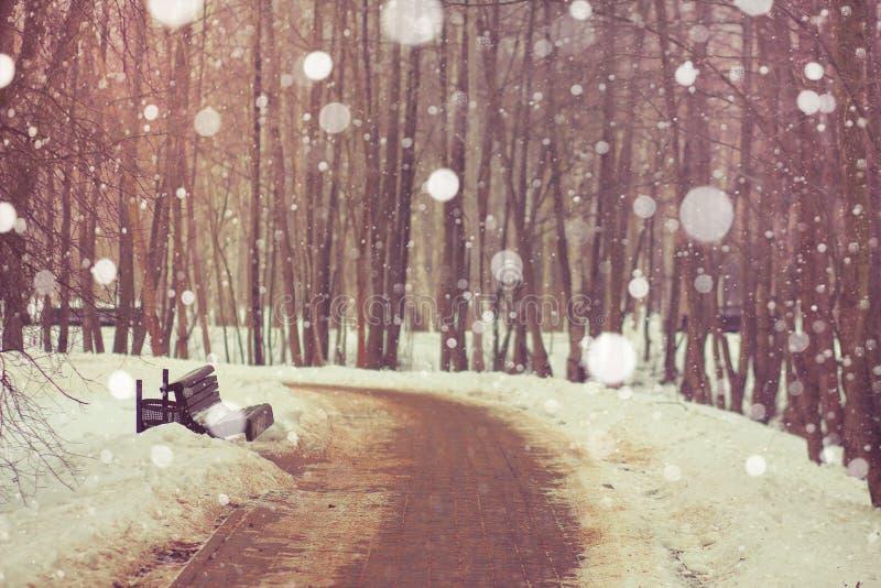 Parque do inverno da paisagem com close up dos flocos de neve imagens de stock