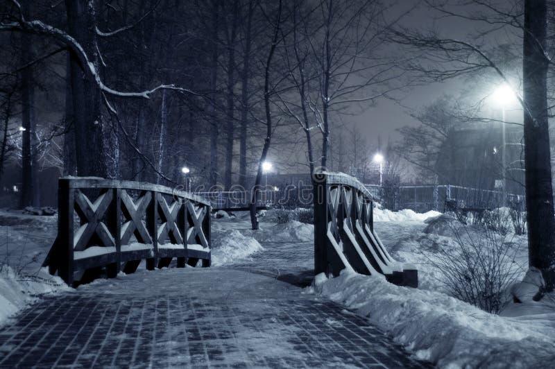 Parque do inverno na noite. foto de stock