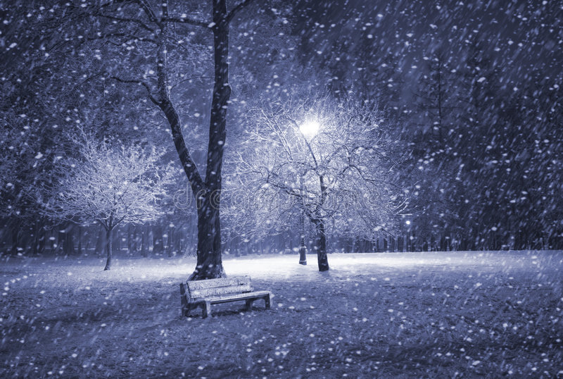 Parque do inverno na noite imagem de stock royalty free