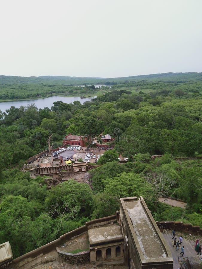 Parque do nantional de Ranthmbhor fotografia de stock royalty free